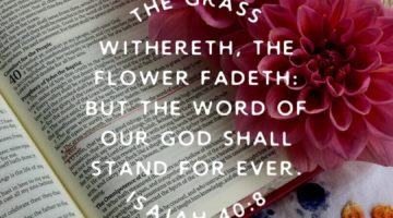 Weekly Threads of Encouragement – God's Word